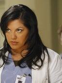 Grey's Anatomy, Season 4 Episode 14 image
