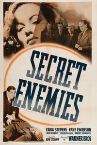 Secret Enemies as Dr. Woodford