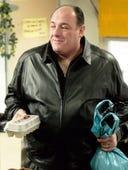 The Sopranos, Season 6 Episode 8 image