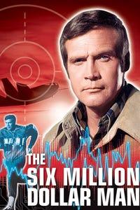 The Six Million Dollar Man as Jaime Sommers