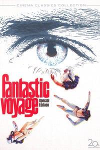 Fantastic Voyage as Jan Benes