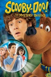 Scooby-Doo! Abracadabra-Doo as Shaggy
