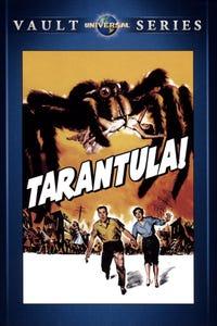 Tarantula as 1st Pilot