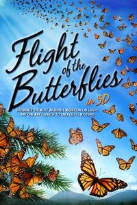 Flight of the Butterflies as Catalina Aguado