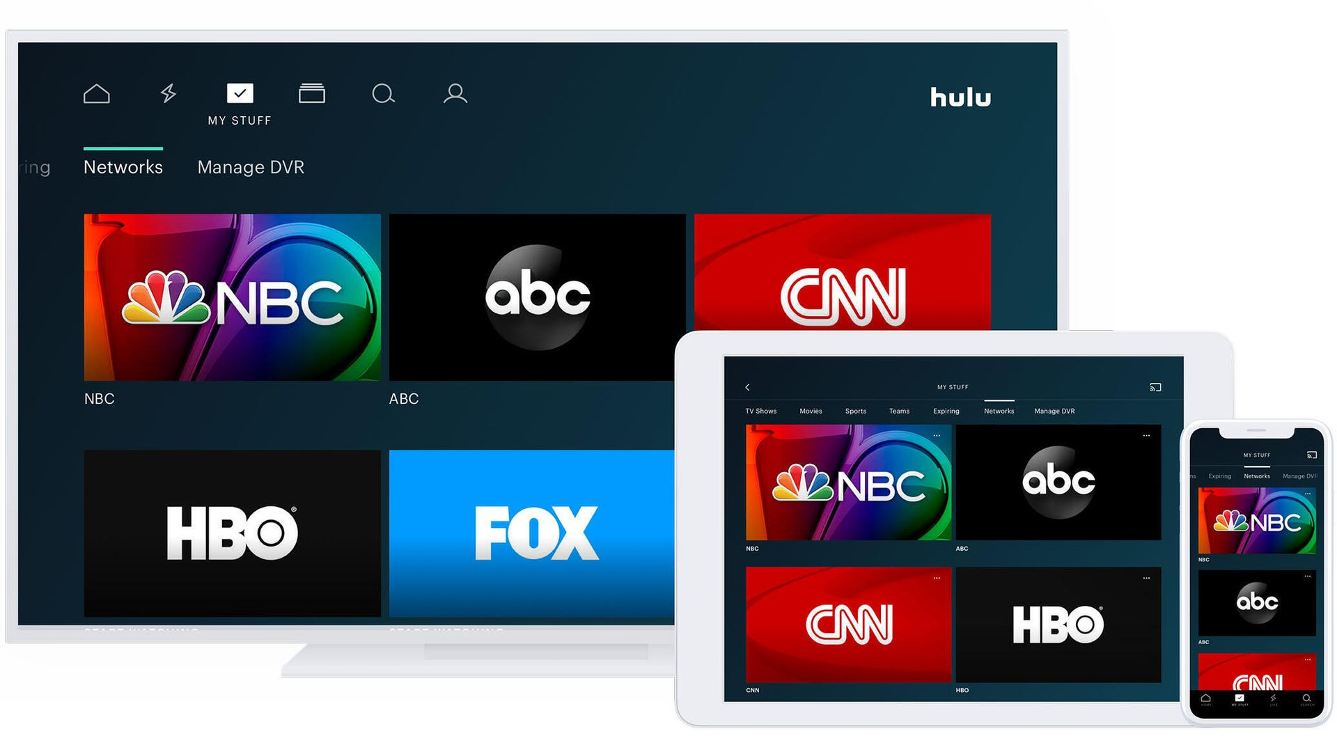 Hulu TV networks on multiple devices