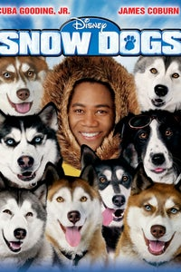 Snow Dogs as Ernie