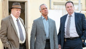 9 Shows Like Bosch to Watch After You Finish Season 7