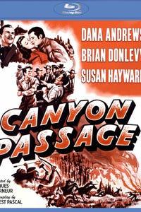 Canyon Passage as Gray Bartlett