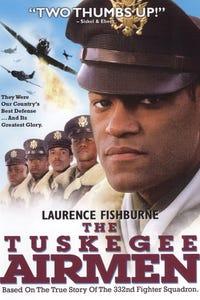 The Tuskegee Airmen as Lt. Col Davis