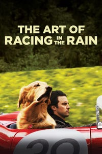 The Art of Racing in the Rain as Denny Swift