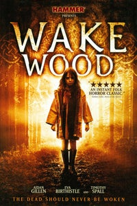 Wake Wood as Patrick