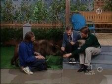 Mister Rogers' Neighborhood, Season 20 Episode 13 image