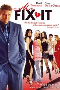 Mr. Fix It as Jaffe