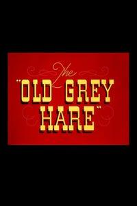 The Old Grey Hare as Elmer Fudd