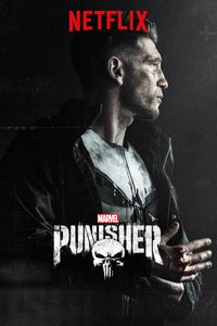 Marvel's The Punisher as Anderson Schultz