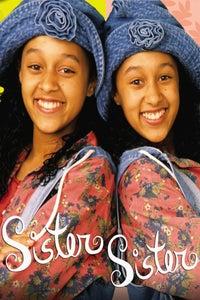 Sister, Sister as Lisa Landry