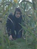 Wayward Pines, Season 2 Episode 2 image