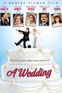 A Wedding as Dr. Jules Meecham