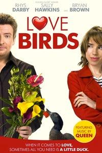 Love Birds as Holly
