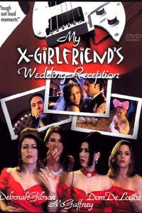 My X-Girlfriend's Wedding Reception as Sylvia Weinstein