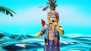 The Masked Singer Revealed Who Was Behind the Pineapple Mask and Whoa