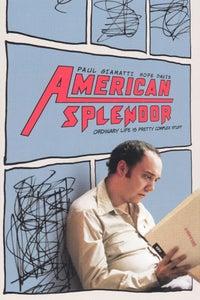 American Splendor as Robin