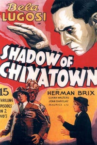 Shadow of Chinatown as Captain Walters