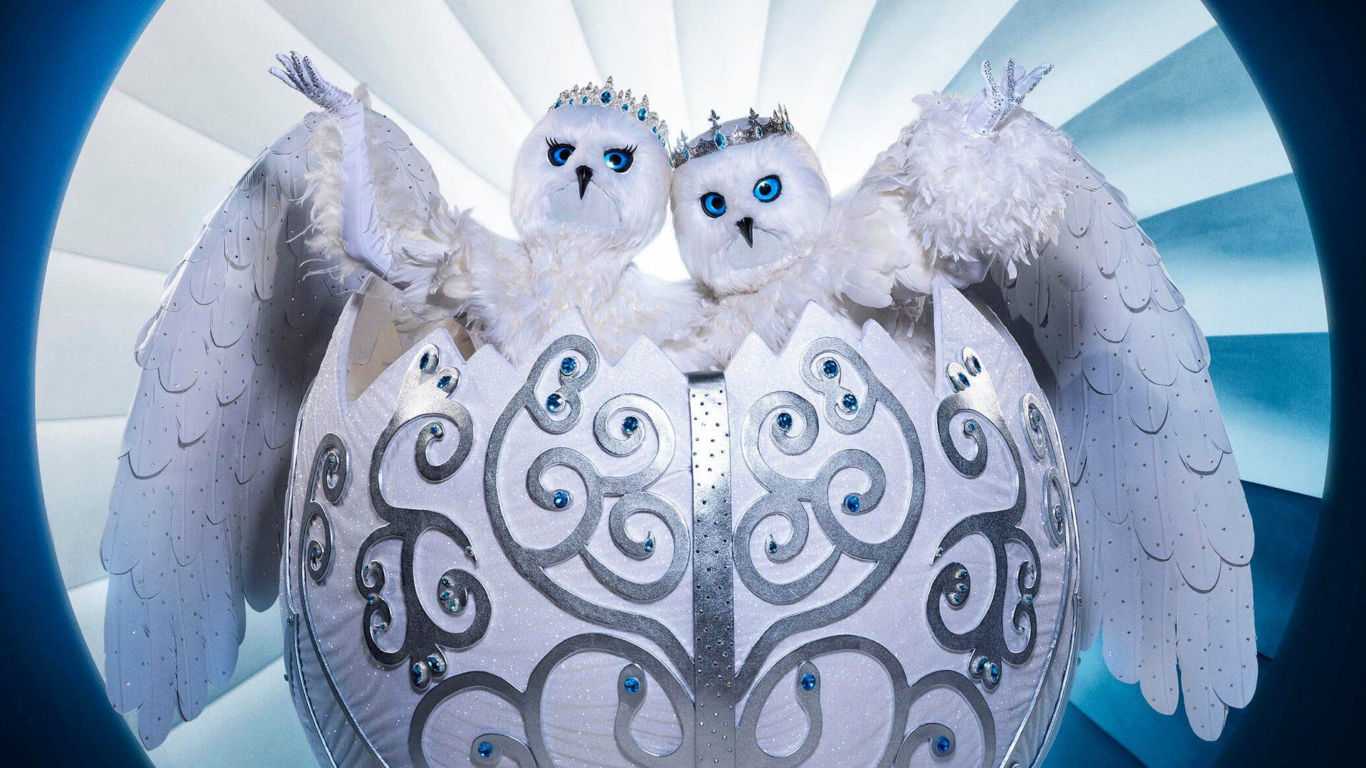 Snow Owls, The Masked Singer