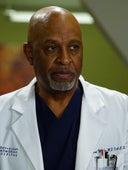 Grey's Anatomy, Season 13 Episode 5 image
