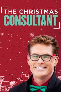The Christmas Consultant as Owen