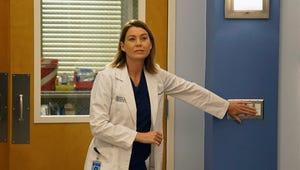 Grey's Anatomy: Season 12 Won't Be Sunnier for Everyone