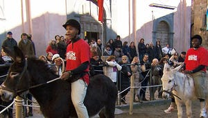 Amazing Race's Flight Time and Big Easy: It's the Donkey's Fault!