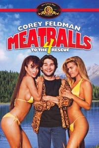 Meatballs 4 as Ricky