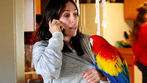 Exclusive: Heidi Fleiss on Her New Animal Planet Show Prostitutes to Parrots