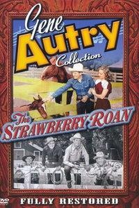The Strawberry Roan as Joe Bailey