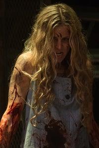 Sheri Moon Zombie as Heidi