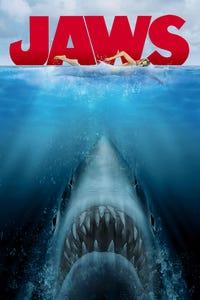 Jaws as Hooper