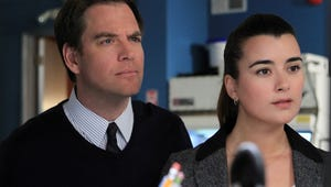 Hey NCIS Fans! Michael Weatherly and Cote de Pablo Are Reuniting for a New Show