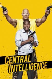 Central Intelligence as Bob Stone