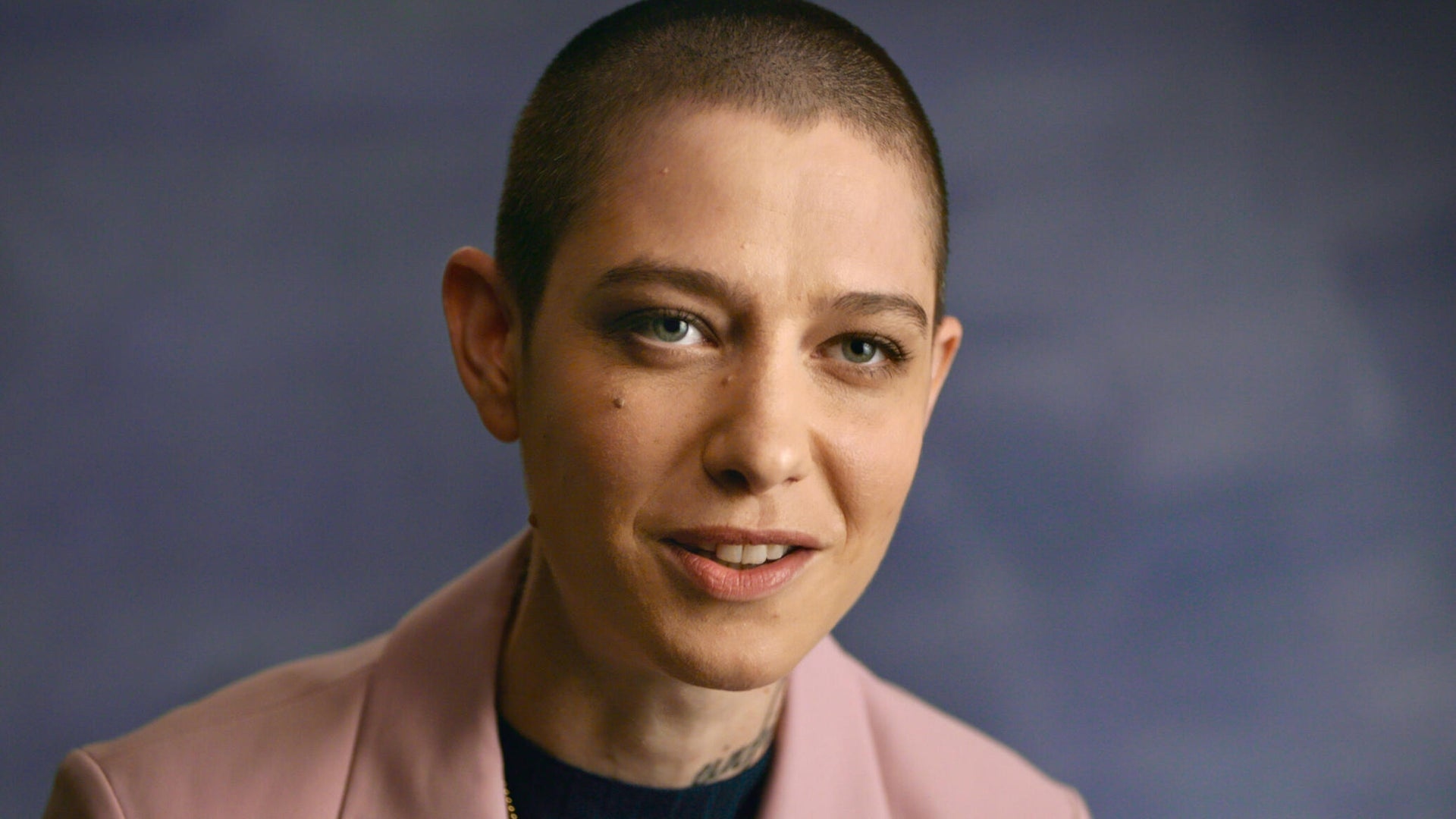 Asia Kate Dillon, Visible: Out on Television