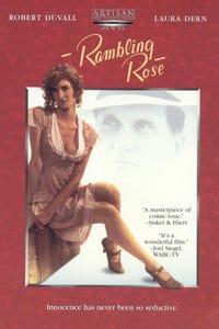 Rambling Rose as Willcox
