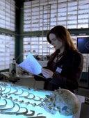 Bones, Season 1 Episode 1 image