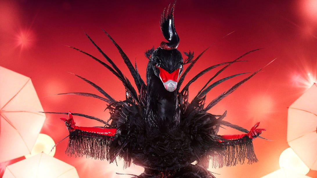 Black Swan, The Masked Singer