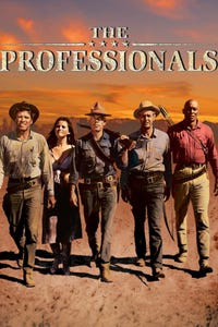 The Professionals as Bandit