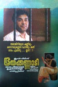 Bhoothakannadi as Vidyadharan