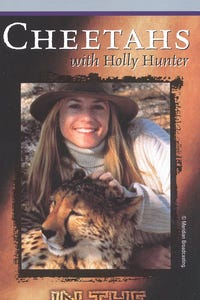 In the Wild: Cheetahs with Holly Hunter as Host