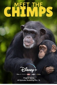 Santuario de chimpancés