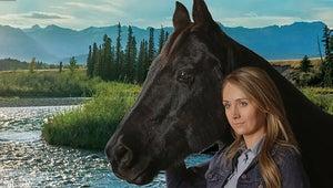 7 Shows Like Heartland to Watch if You Love Heartland (and Horses)