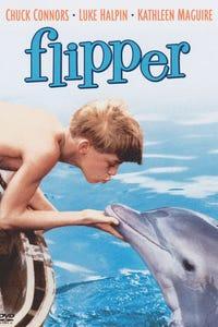 Flipper as Porter Ricks