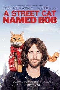 A Street Cat Named Bob as Nigel Bowen